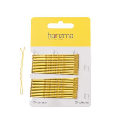 Невидимки волна Harizma Professional 60мм 24шт золото: фото